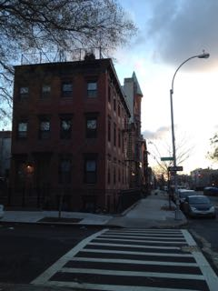 Picture of Krash Brooklyn
